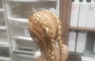 BraidTraining12