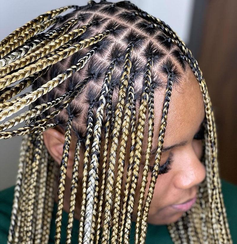 Pretty Braid Hairstyles